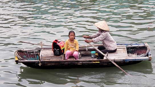 Halong Bay vene